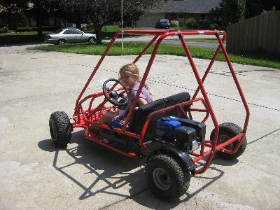 Stingray Go Kart Progreen Plus Knoxville Tn Lawn