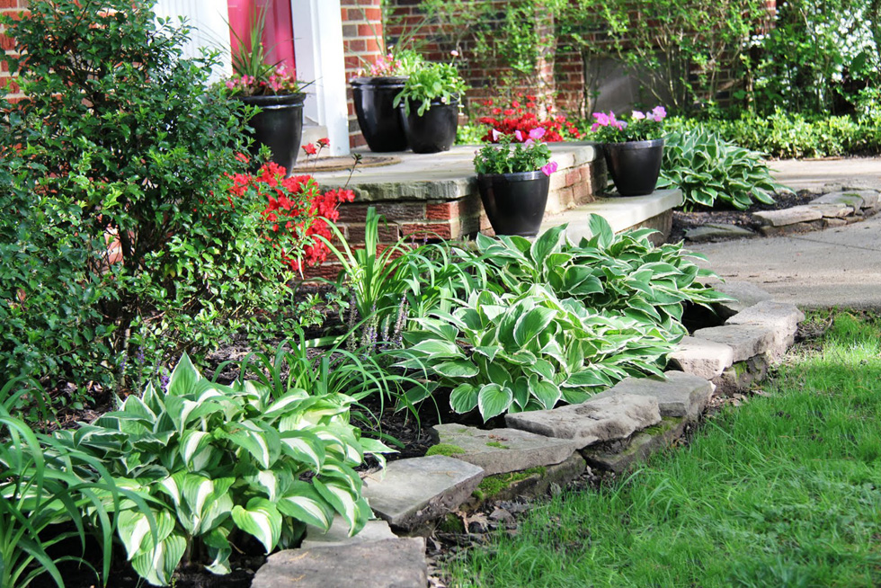 10 Landscaping Ideas That Will Transform Your Yard - ProGreen Plus ...